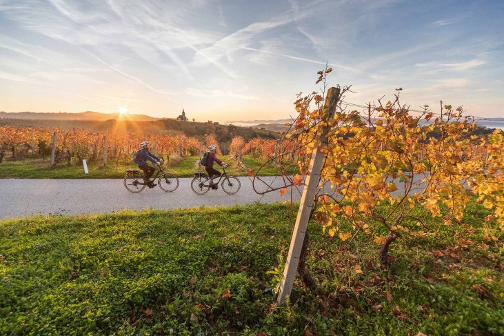 Bikers on an autumn sunset biking trip through the reddish vineyards in Bela Krajina.