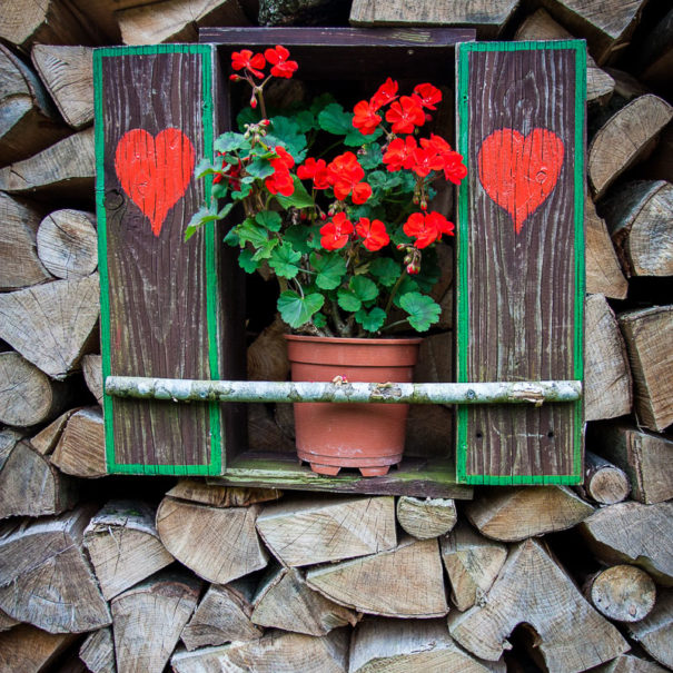 Typical alpine stack of firewood adorned with shutters with cute red hearts and flowers.