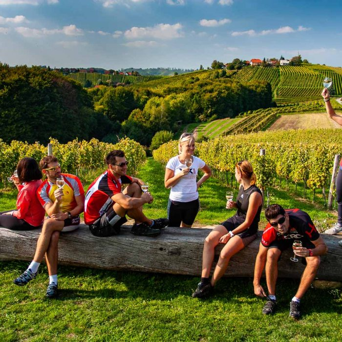 cycling-vineyards-jeruzalem-slovenia-slotrips